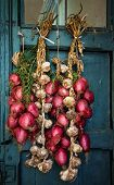 The south Italy, area Calabria, Tropea city, national food - red onion