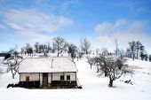 Old House - Winter