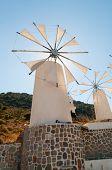 Tradition Windmill