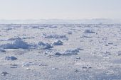 Ice Fjord