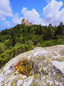 Pena National Palace And Park In Sintra