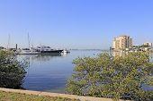 Elegant Sarasota Bay