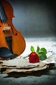 Violin sheet music and rose black composition still life music