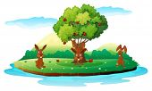 Illustration of an island with three playful rabbits on a white background