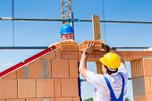 Two bricklayers or builders or workers building or bricklaying or laying a stone or brick wall on a