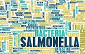 picture of poison  - Salmonella Food Poisoning Concept Awareness and Prevention - JPG