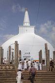 Pelgrims At The Sacred Stupa At Anurdhapura, Sri Lanka