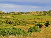 Landscape Of Minorca
