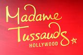 LOS ANGELES - FEB 13:  Madame Toussauds Hollywood Signage at the Sandra Bullock Wax Figure Unveiling