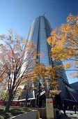 Tokyo, Japan - November 23, 2013:  Mori Tower In Roppongi Hills