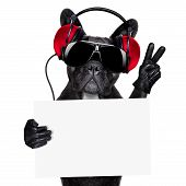 pic of jukebox  - cool dj dog listening to music holding a white and blank banner or placard with peace or victory fingers - JPG