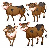 Illustration of a brown cow with different posts