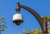Security Camera, Cctv In The Park