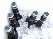 image of liquor bottle  - bottles of beer chilling on ice  - JPG