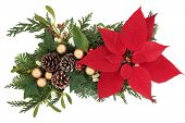 Poinsettia flower arrangement with gold bauble decorations and winter greenery over white background.