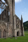 WALES, UK - 26 JULY 2014: Tintern abbey cathedral ruins. Abbey was established at 1131. Destroyed b