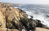 The rocky coast -
