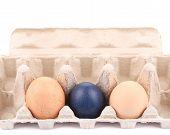 Eggs and egg carton.