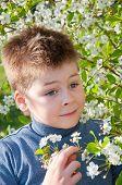 Portrait Of A Boy Near The Cherry Blossoms