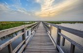 A long and straight wooden wetland walkway with sunset sky