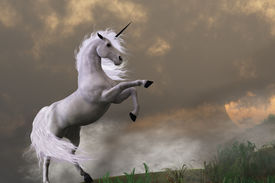 pic of bucking bronco  - A unicorn stag asserts its power on a hill shrouded in clouds - JPG