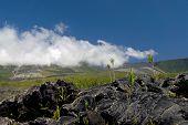 Lava Eruption, Reunion island