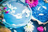 Spa Composition Water Bath Salt Shells Flowers