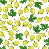 Seamless nature pattern with gooseberries.