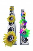 Sunflower loudspeaker