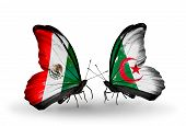 Two Butterflies With Flags On Wings As Symbol Of Relations Mexico And Algeria