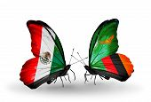 Two Butterflies With Flags On Wings As Symbol Of Relations Mexico And Zambia