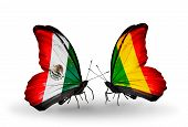 Two Butterflies With Flags On Wings As Symbol Of Relations Mexico And  Mali