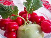 radishes and french turnip