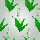 Seamless Texture Lily Spring Flower Vector