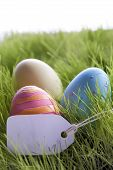 Three Colorful Easter Eggs With Empty Label For Copy Space