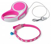 Leash For Dog With Collar