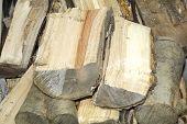 Broken Logs