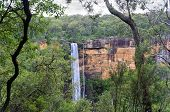 stock photo of southern  - Australian bushland views of Fitzory Falls in the Southern Highlands of NSW Australia - JPG