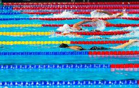 foto of swim meet  - Women free style swimming race on swimming pool - JPG