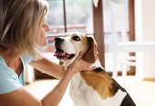 image of dog-house  - Senior woman with her dog inside of her house - JPG
