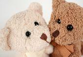 Teddy Bear Kisses And Hugs