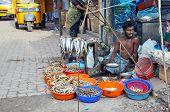 Indian Fish Seller