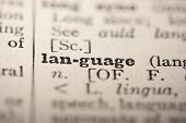 picture of pronunciation  - Word language from the old dictionary a close up - JPG