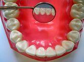 Dental Mirrow And Teeth