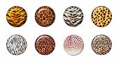 stock photo of zoo animals  - eight african wild animal skins in 3d button - JPG