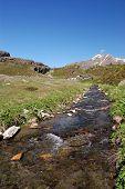Alpine mountain river