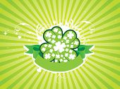 Shamrock banner vector illustration