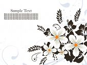 black and white flower pattern background with sample text poster