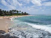 Popular Poipu Beach