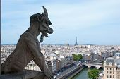 Chimera overlooking the Eiffel Tower